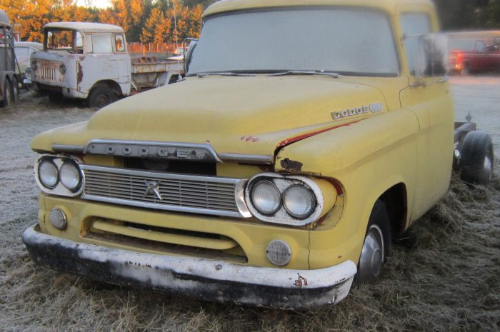 1960 Dodge ½ ton pick-up