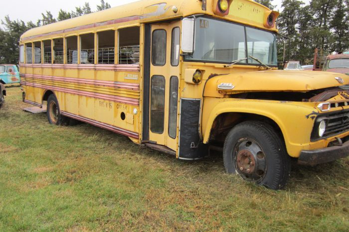 1966 Ford Pig Bus